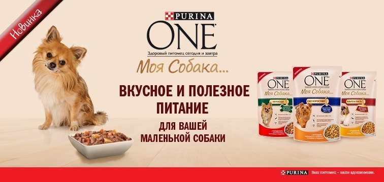 Новая серия кормов PURINA ONE® Моя Собака...