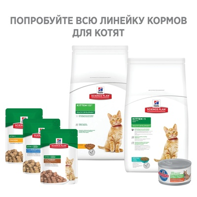 Корм Hill's Science Plan для котят с курицей, Kitten Healthy Development Chicken