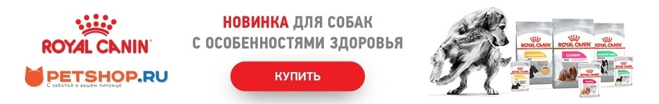 Новинки от Royal Canin