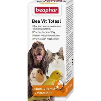 витамины во время линьки для кошек, собак, птиц и грызунов